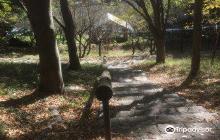 Ipponsugi Park