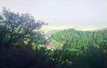 罗山自然保护区