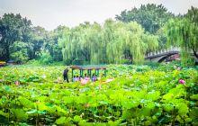 紫竹院公园