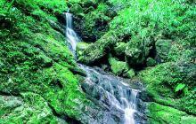 黑山谷风景区
