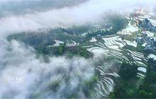 戈千崖风景区