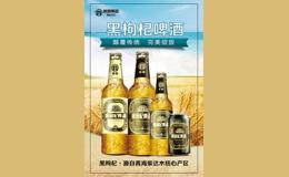 【皖商集团】黑枸杞啤酒